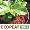 Lambert: EcoPeatPlus+ (Wood Fiber) – Grower Friendly!