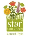 Star® Roses & Plants (Conard-Pyle) -- The Knock Out® Family of Roses