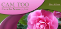 Cam Too -- Camellia Nursery Inc